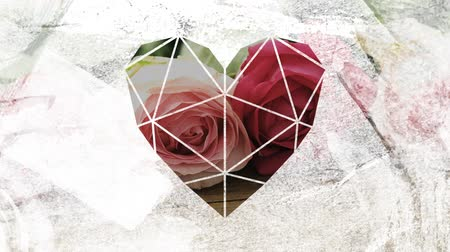 visto : Animation of a close up of white and pink roses lying a wooden table seen through a white heart shaped window in the foreground Stock Footage