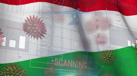 organizma : Animation of multiple macro corona virus spreading with charts and statistics and Hungarian national flag billowing in the background. Global health warning scare spreading infections concept digitally generated image.