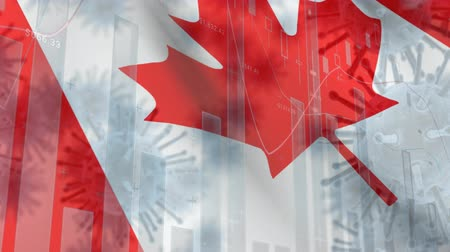 uyarmak : Animation of multiple macro corona virus spreading with charts and statistics and Canadian national flag billowing in the background. Global health warning scare spreading infections concept digitally generated image.