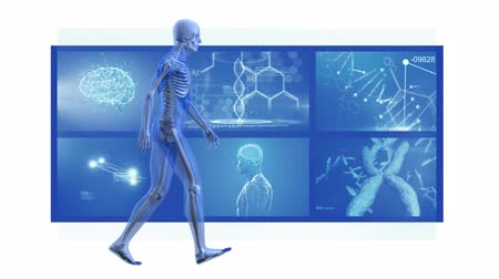 rezonans magnetyczny : Animation of 3d blue model of human walking in front of magnetic resonance imaging scan screens in the background. Global medicine science and research network digitally generated image.