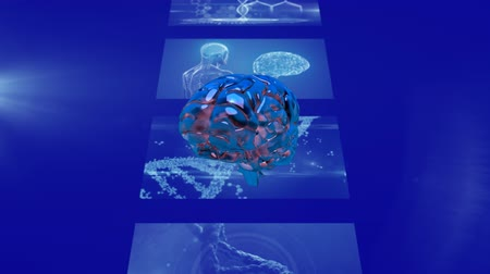 прядь : Animation of 3d blue glowing human brain rotating in front of strip of magnetic resonance imaging scan screens and DNA strand spinning in the background. Global medicine science and research network digitally generated image.