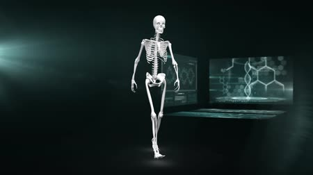 rezonans magnetyczny : Animation of 3d model of human skeleton walking in front of magnetic resonance imaging scan screens in the background. Global medicine science and research network digitally generated image.