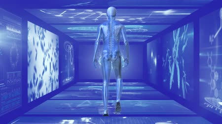 rezonans magnetyczny : Animation of rear view 3d blue model of human walking in hallway of magnetic resonance imaging scan screens and DNA strands rotating in the background. Global medicine science and research network digitally generated image.