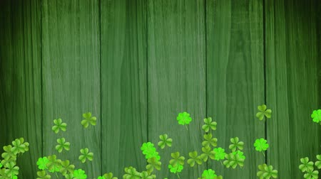 st patrick : Animation of St Patricks Day multiple shimmering moving light green shamrocks with spots of light on dark green wooden boards in the background. Celebration of Irish culture concept digitally generated image.