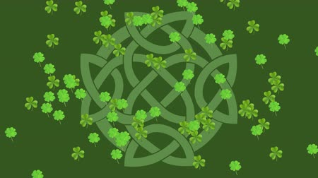 patron : Animation of St Patricks Day multiple shimmering falling green shamrocks with traditional Celtic knot infinity symbol on green background. Celebration of Irish culture concept digitally generated image. Stock Footage
