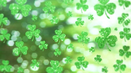 patron : Animation of St Patricks Day multiple shimmering floating green shamrocks with spots of light on glowing green background. Celebration of Irish culture concept digitally generated image. Stock Footage