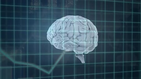 biologia : Animation of white 3d human brain rotating over grid with medical data processing on green background. Medicine neurology and global scientific data processing concept digitally generated image. Coronavirus Covid19 testing Stock Footage