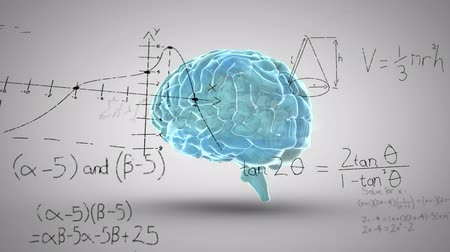 biologia : Animation of 3d human brain rotating in seamless loop over scientific mathematical formula hand written on white background. Medicine neurology and global science concept digitally generated image. Coronavirus Covid19 testing Stock Footage