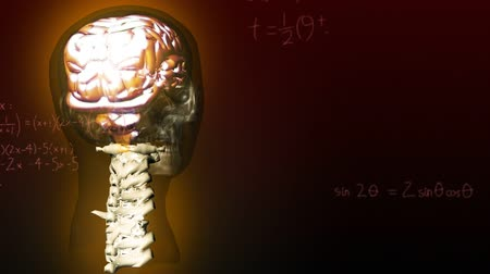 evolução : Animation of 3d glowing human brain rotating in seamless loop over scientific mathematical formulae hand written on brown background. Medicine neurology and global science concept digitally generated image. Stock Footage