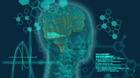 psikoloji : Animation of 3d green glowing human brain rotating in seamless loop over medical data processing and structural formulae of chemical compounds on green background. Medicine neurology and global science concept digitally generated image. Coronavirus Covid1 Stok Video