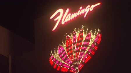 flaming : 4K ES: The main neon marquee of the Flamingo Hotel on the Las Vegas Strip invites gamblers and tourists from all over the world.