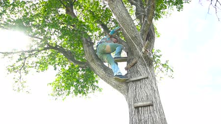 nativo : Man climb up on tree