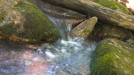 torrente : Water in the beautiful mountain river flows round a big stone in slowmotion. Small waterfall in river Vídeos