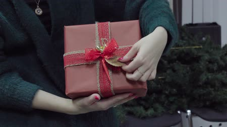 kerstpakket : Hand of woman with christmas gift box