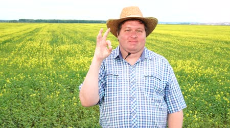 schválení : Farmer standing in field and showing sign of okay, wear cowboy hat on a sunny day Dostupné videozáznamy