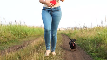 tacskó : Small dog next to a woman happily running through the dirt road outdoor, slow motion