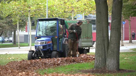 October 23, 2018. Germany, Dusseldorf. Caucasian male worker in uniform and protection of a city park worker. Autumn cleaning of fallen leaves. Gardener using his leaves in the garden. Stock Footage