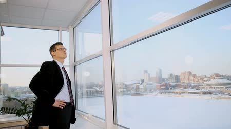 businessman standing in the office on the background of a large window