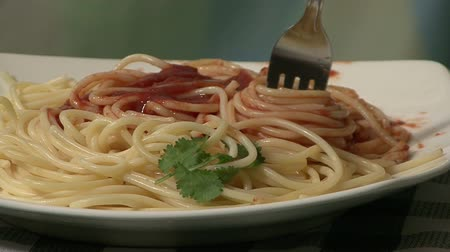 meal : Spaghetti and tomato sauce