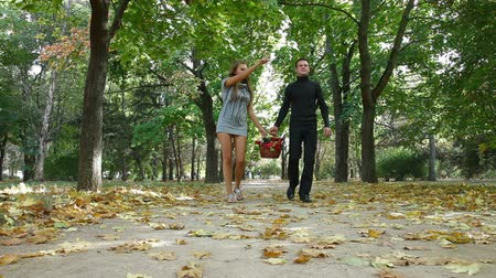 пикник : DOLLY: Young happy couple with picnic basket walking together