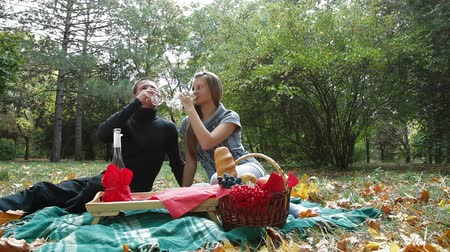 пикник : Teen couple celebrating together at picnic Стоковые видеозаписи