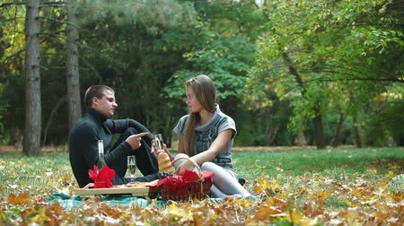 пикник : Happy Young Couple Having Fun On Picnic Стоковые видеозаписи