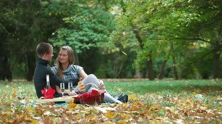 romantic couple : Happy young couple on a picnic in the autumn park Stock Footage