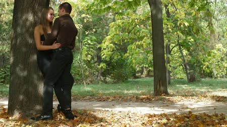 объятие : Loving couple in the autumn city park