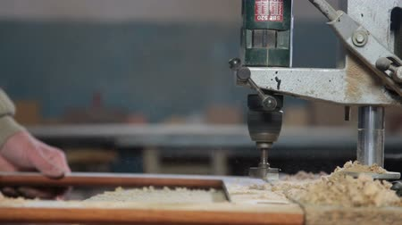 práce ze dřeva : Worker manufacturing wooden furniture, drills hole with bench drill