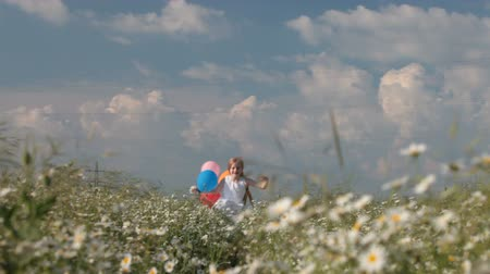 corrida : little girl with balloons runs away through the blooming summer field