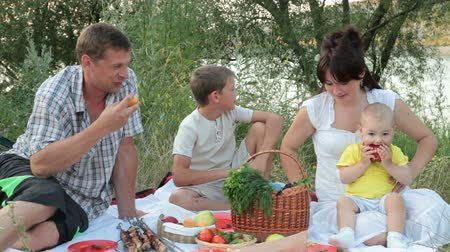 Young family with children on a picnic by the lake in summer Wideo