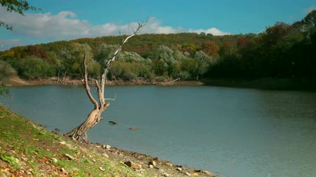 autumn landscape with a lake in the woods among the hills Crimea Krasnolesye Wideo