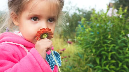 описание : Adorable little girl smelling a red flower. close-up
