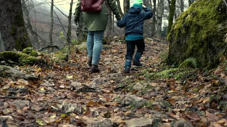 walk behind : Mother And Son Are Walking Along Autumn Forest