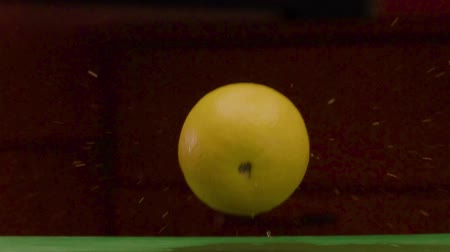 субтропический : Round Yellow Lemon Falls On A Damp Green Surface