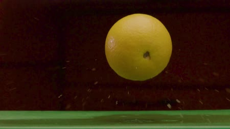 citron : Round Yellow Lemon Falls On A Damp Green Surface