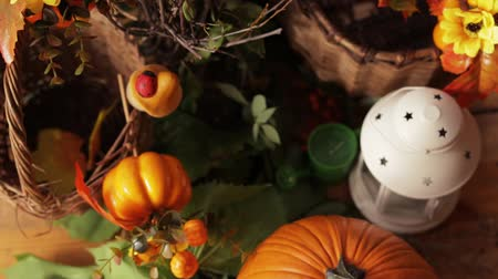 Pumpkin, Leaves Apple With Flowers And Basket Stock Footage