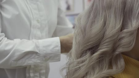 bodorítás : Hands Of A Hairdresser Comb A Strand Of White Hair