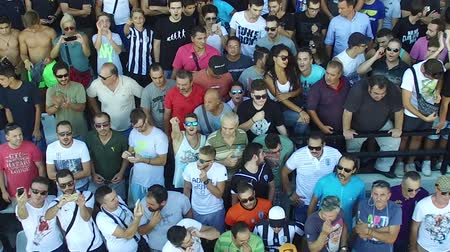 delirar : Thessaloniki, Greece, Sept 3 2015: Supporters of Greek soccer club PAOK attend the contract-signing ceremony of Bulgarian striker Dimitar Berbatov with PAOK FC at Toumba Stadium Vídeos
