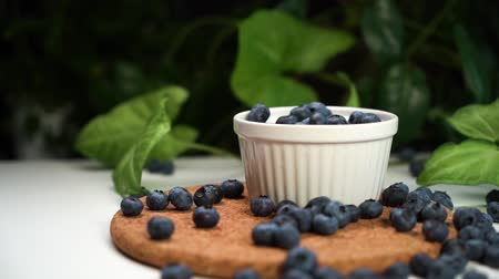 bilberry : slow motion footage, fresh blueberries falling in white bowl. cinematic view with green plants on background