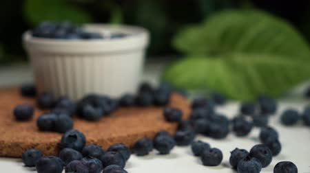 bilberry : cinematic footage of blueberry, which lies on table and in white bowl