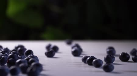 bilberry : Fresh blueberries rolls on a white table with green plants on the background