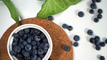 bilberry : Fresh blueberries in white bowl close-up, slow motion, pan cinematic shot. Stock Footage