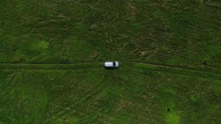 cropland : Aerial view fly away from gray SUV in the middle of the green field with trees and grass.