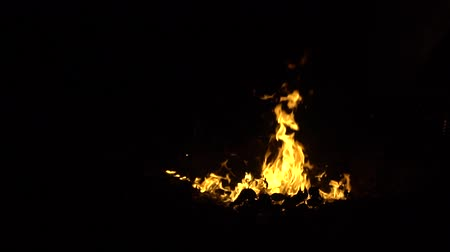 şenlik ateşi : Bonfire in night. Close view. Slow motion. Campfire in the woods.