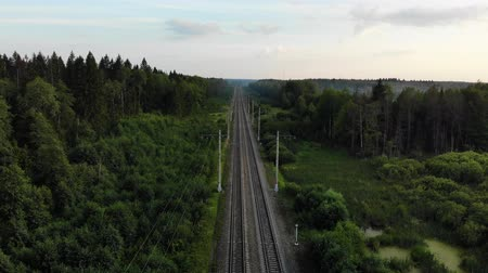 vagão : Nice cinematic aerial footage fly above two way railways in the forest with a lot of trees. Vídeos