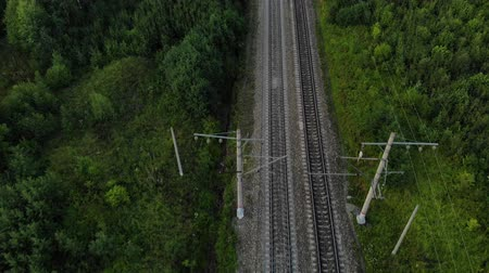 arborizado : Fly over railroad between forest.