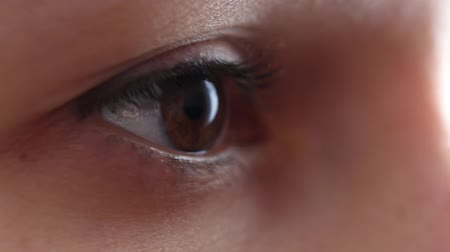 szempillák : Brown eyes of a close-up girl