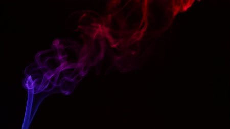 smokey : Multicolored smoke from aromatic sticks close up on black background