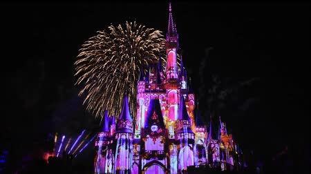 enjoynment : Orlando, Florida. May 28, 2019. Happily Ever After is Spectacular fireworks show at Cinderellas Castle on dark night background in Magic Kingdom (1)